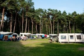 Nieuws: Campings in Brabant draaien topseizoen, ondanks de regen