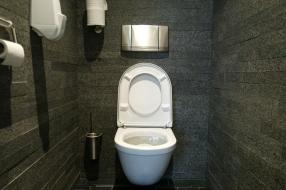 Nieuws: De meest toiletvriendelijke gemeente van ons land is Druten