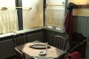 Nieuws: Er is bewijs: Josephine Baker heeft in WOII opgetreden in Ov
