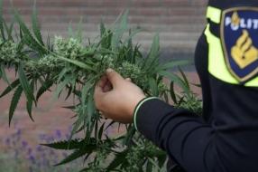 Nieuws: Gemeente Beuningen sluit drugspand