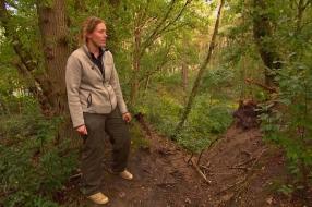 Nieuws: Historische eikenwal bij Alphen lijdt onder mountainbikers e