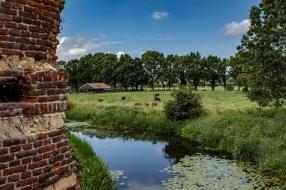 Nieuws: Land van Maas en Waal moet toeristische trekpleister worden