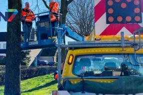 Nieuws: Processierupsen worden in Beuningen bestreden door mezen