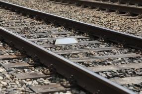 Treinverkeer tussen Oss en Wijchen na dag hervat